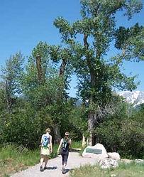 Laurance S. Rockefeller - hiking trail.j