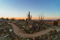 Desert Sunset Trail