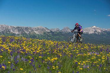 Gallatin National Forest biking.jpg