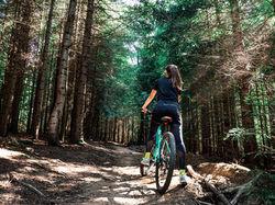 Bike Path Trail