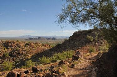 Peoria landscape trail.JPG