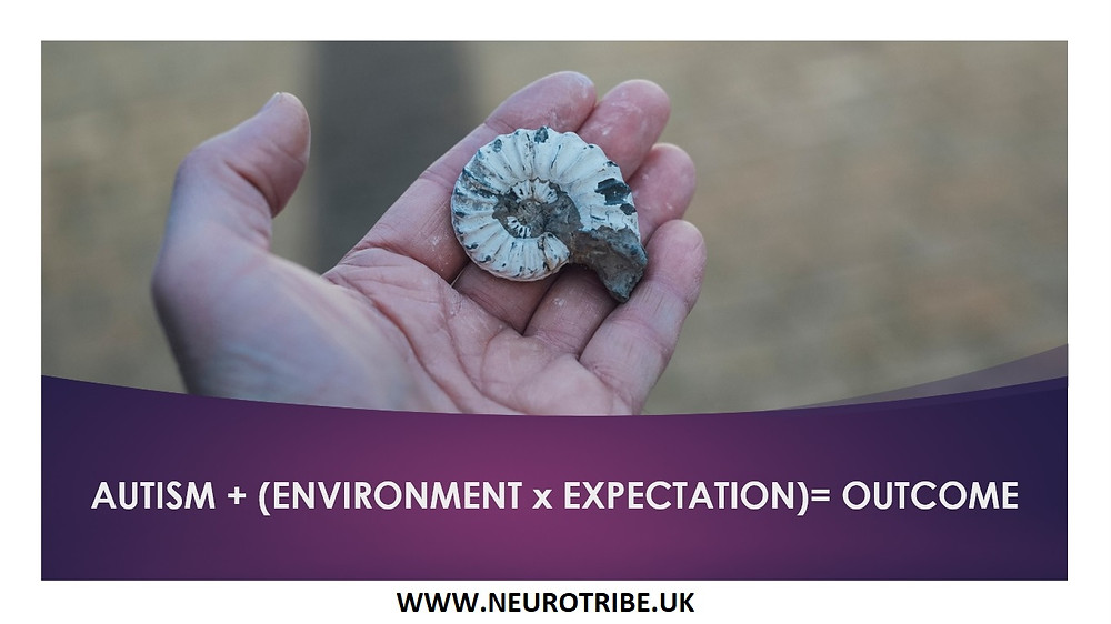 autism + (environment x expectation)= outcome. From NeuroTribe UK. Picture of a hand holding an ammonite. Taken by Markus Spiske on Unsplash.