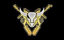 20 - Buffalo Logo (Pentagon Website).png