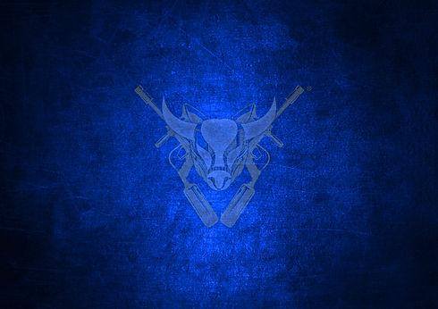 20 - Logo with Blue Background 02.jpg