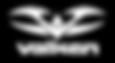19 - Winter Wars Valken Logo.png