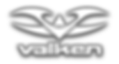 19 - Winter Wars Valken Logo.png