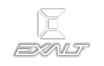 20 - Exalt Logo (Pentagon Website).png