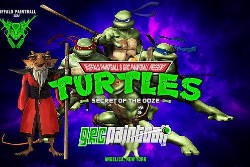Turtles Flag (Purple, Orange, Blue, Red)