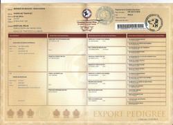 Artus foreign registration