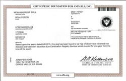Anka's Eye Certificate