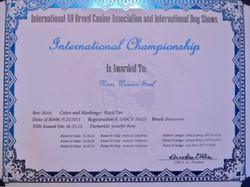 Anka's International Championship