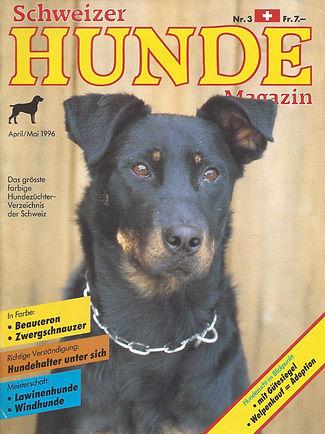 1996 Beauceron Rasseportrait Hundemagazi