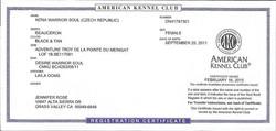 Anka's AKC Certificate