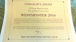 Anka's Westminster Invite