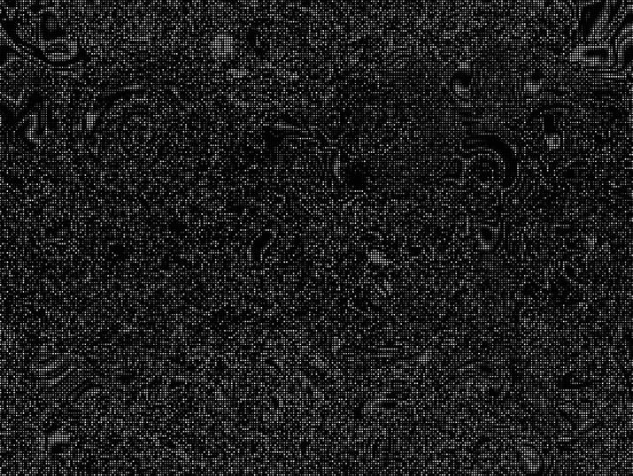 image%3A66708_mirror17.jpg