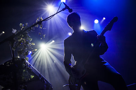 Guitar player at concert.jpg