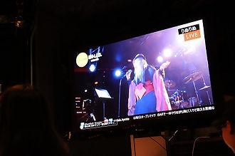 ライブハウスEN-LAB.のディスプレイモニター