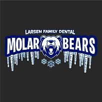 molarbear.png