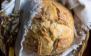 Healthy Low GI Bread