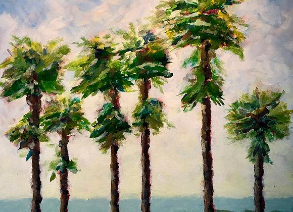 6 Palms