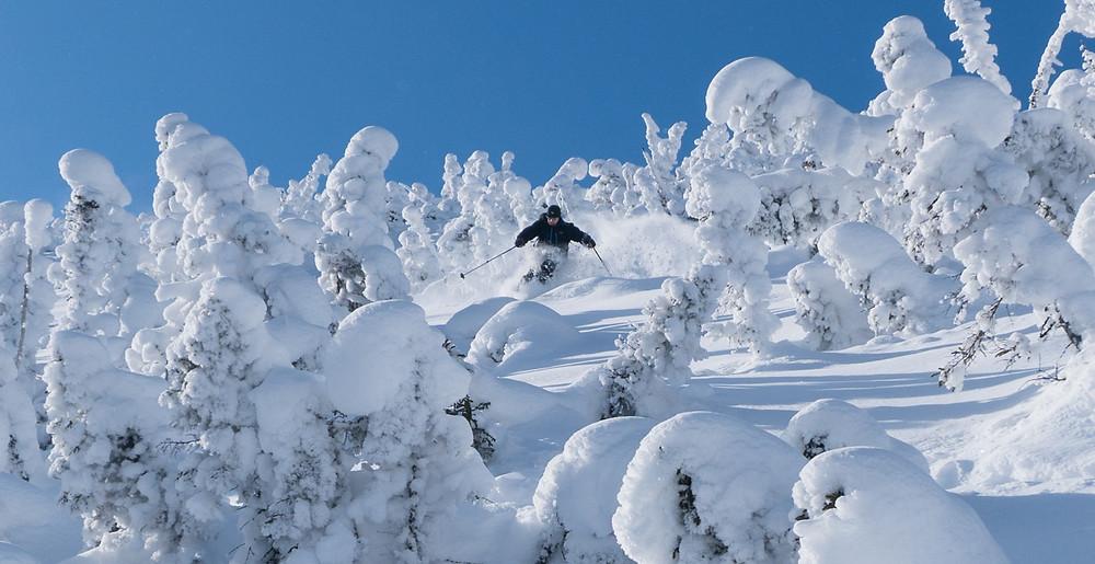 powder skiing chic chac