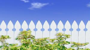 10 Passos Infalíveis para Você Escolher seu Terreno Ideal!
