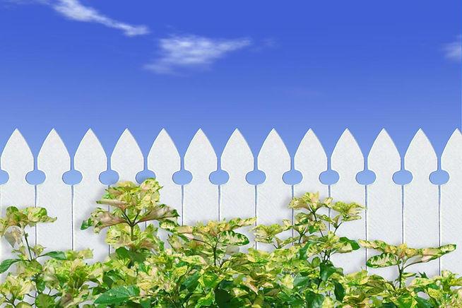 ホワイトピケットフェンス