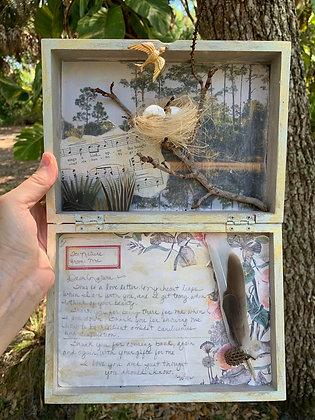 'Dear Nature' Shadowbox
