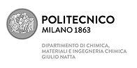 NRG partner_Politecnico di Milano.jpg