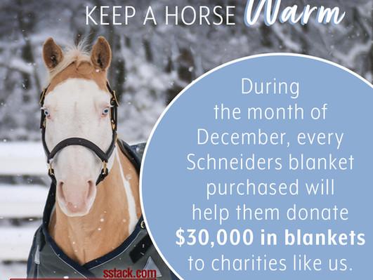 Buy A Blanket, Help Keep A Horse Warm