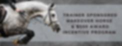 Trainer Sponsored Makeover Horse & $500