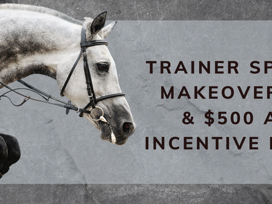 Retired Race Horse Thoroughbred Makeover Trainer Sponsorship Incentive
