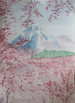 Cerisiers japonais et Mont Fuji