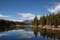 Johnston Lake Reflections
