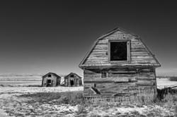 The Prairie barns B&W