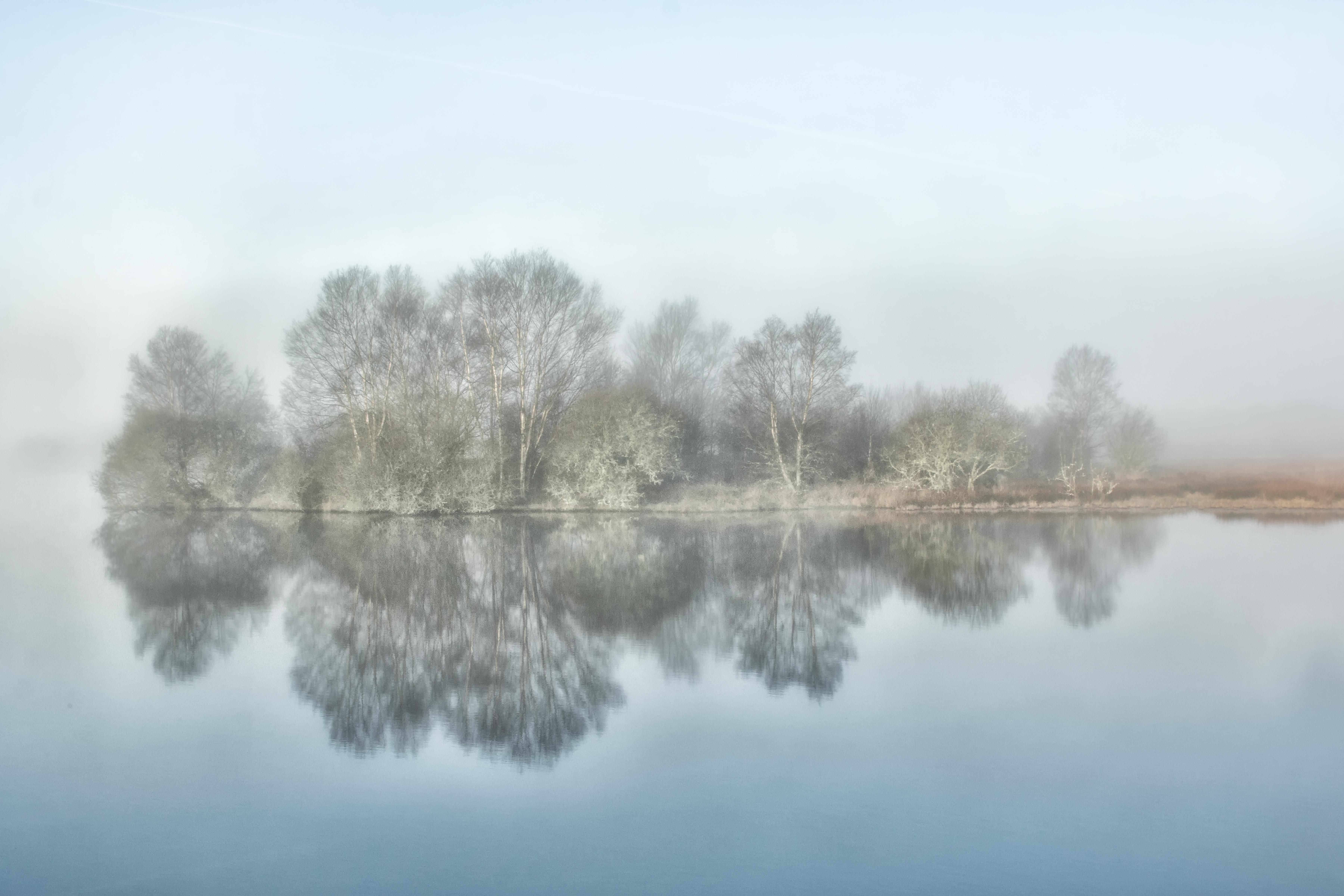 Misty Vartry morning