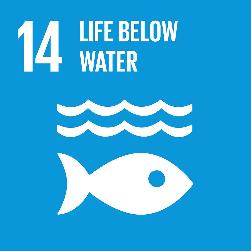 14 Life Below Water