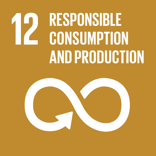 12 Responsible Consumption