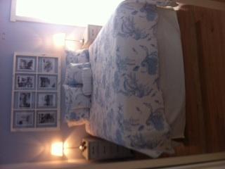 Sea Turtle Bedroom 2