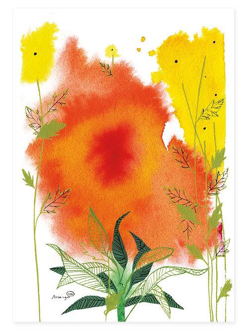 Field Flower - Print A4