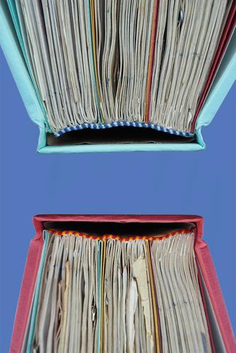 Present & absent book