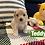 Thumbnail: Teddy-Maltipoo (1127)