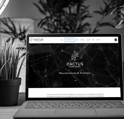 Optimisation et finalisation du site internet Cactus Partners
