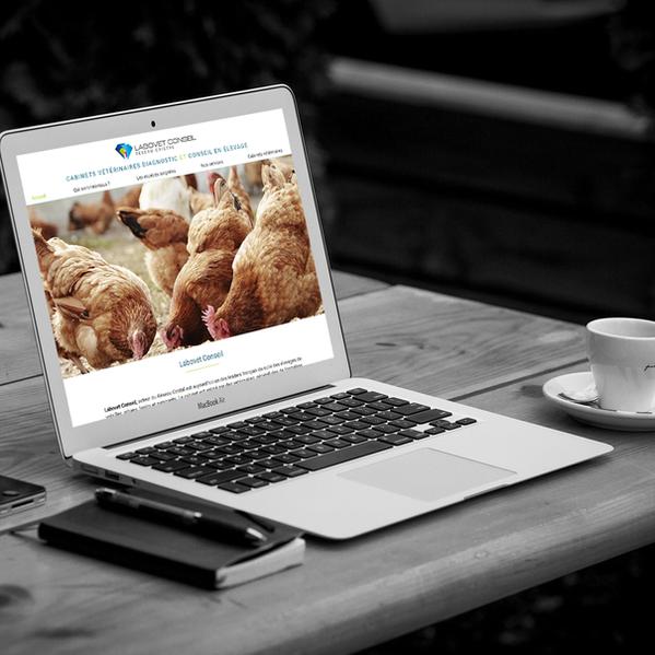 Labovet Conseil - Refonte de site web