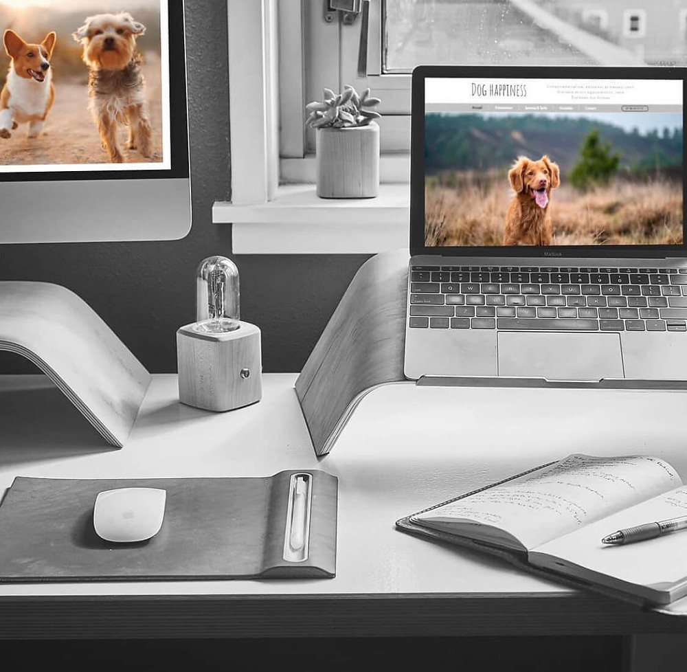 Référencement Dog Happiness | Lacky Agence Web