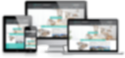 Création site web immobilier Lacky Agence Web