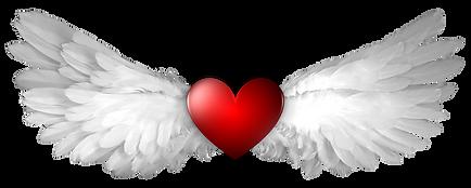 heart-angel wings.png