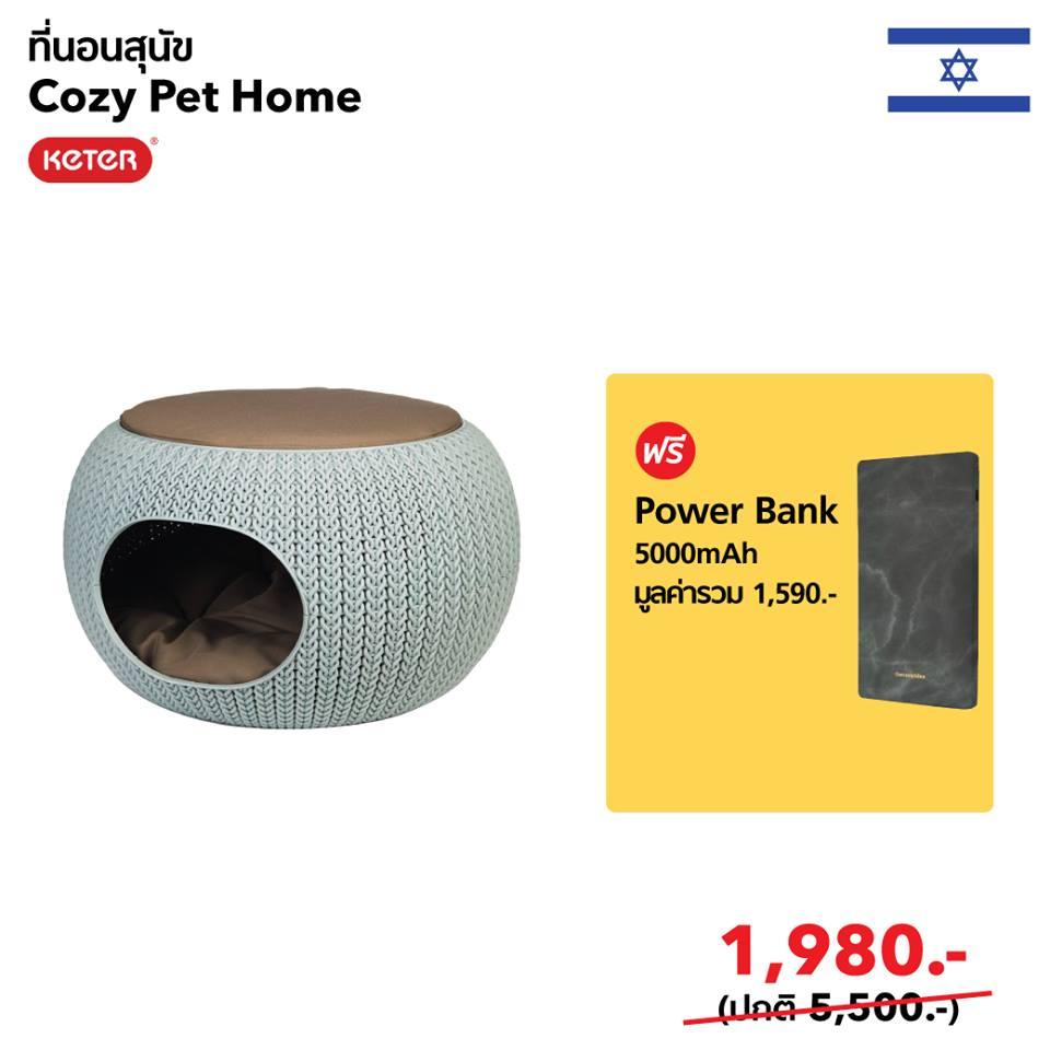 cozy pet home