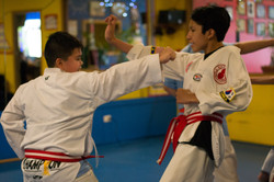 Self- Defense