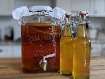 Fresh Organic Scoby for Homemade Kombucha